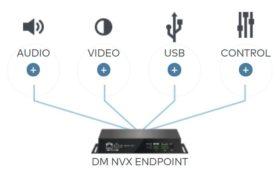 DM NVX 1